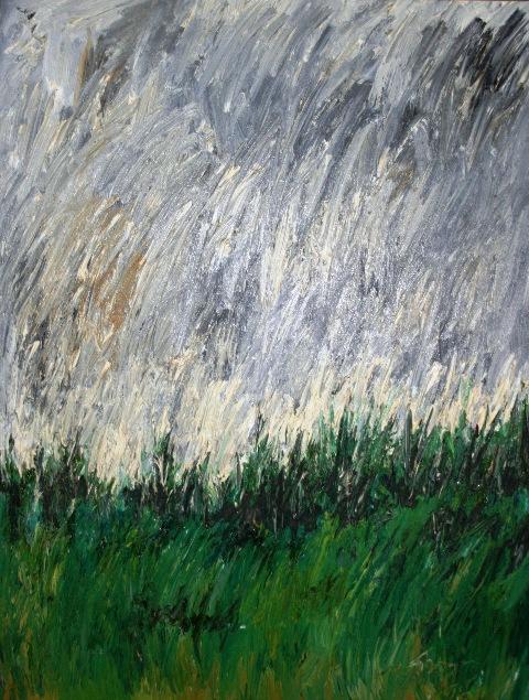 Nanno de Groot: Field & Rain