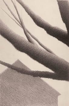 Robert Kipniss: Branches